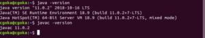 Install Java 11 On Ubuntu 7