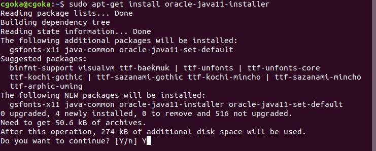 Install Java 11 On ubuntu 3